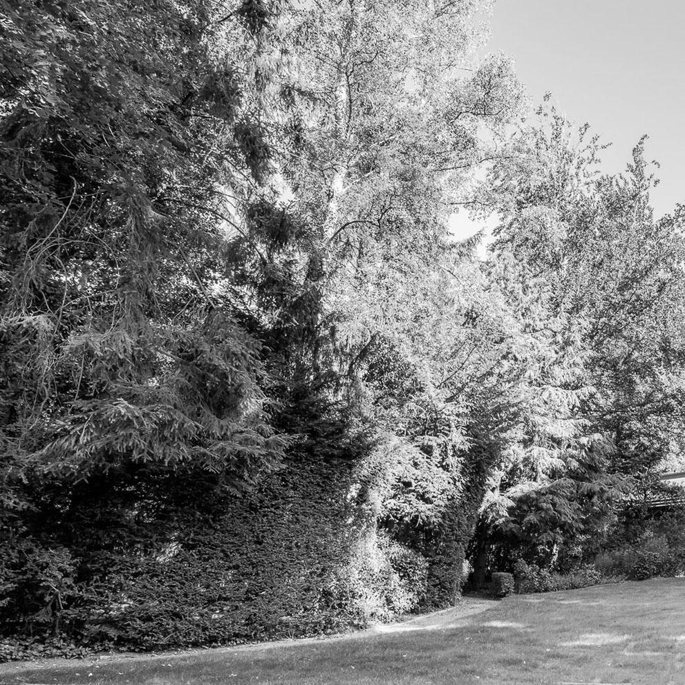 Garten Vorstandsvilla, eingewachsenes Grundstück, Baurecht, Makler: Eberhard Horn Real Estate